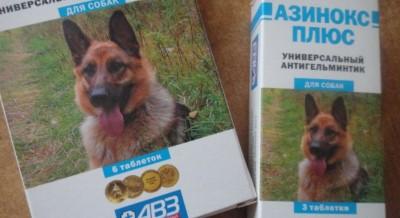 Азинокс плюс для собак: основные свойства и назначение, инструкция.